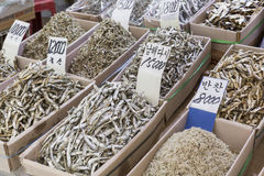 Dried fish market in South Korea Royalty Free Stock Photos