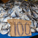 Dried fish Royalty Free Stock Photo