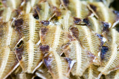 Dried Fish. On a philippine market royalty free stock photo