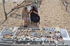 Dried fish in Portugal. Old ladies selling dried fish on the beach of Nazare, a beautiful village of Portugal. Nowadays Nazare has become a popular tourist Royalty Free Stock Photo