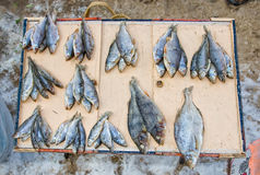 Dried fish ready for sale at the local street market Royalty Free Stock Photography