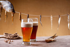 Dried fish, rope, pistachio nuts and beer Stock Photos
