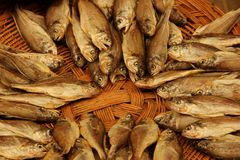 Dried Fish. For sale at the Sinpo market in Incheon, South Korea Royalty Free Stock Image