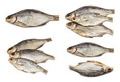 Dried fish set Stock Photos