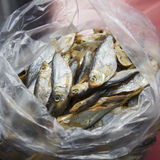Dried fish in a small package. Beer snack Royalty Free Stock Photos
