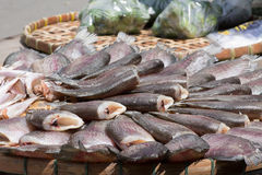 Dried fish. In the sun at market Stock Photo