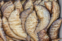 Dried fish textures Royalty Free Stock Photography
