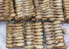 Dried fish on the thai newspaper in market Stock Photos