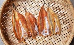 Dried Fish on threshing basket Stock Images