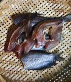 Dried Fish threshing Royalty Free Stock Images