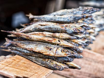 Dried fish. Used in asian cuisine Royalty Free Stock Photo