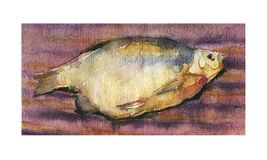 Dried fish, Watercolor sketch of dried fish. Watercolor sketch of dried fish on a striped background stock illustration