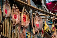 Dried fish and wax duck hangs for sale Shanghai, China Stock Photos