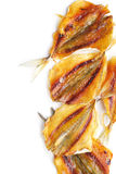 Dried Fish Royalty Free Stock Images