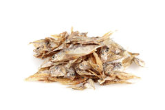 Dried fishes isolated on white background Royalty Free Stock Photography
