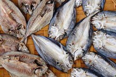 Dried fishes at the market Royalty Free Stock Images