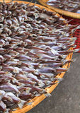 Dried fishs. In seafood market,Thailand Stock Photo