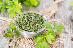 Dried Flat Leaf Parsley Stock Image