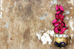 Dried flower Royalty Free Stock Photo
