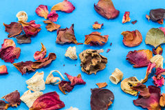 Dried flower decoration Royalty Free Stock Image