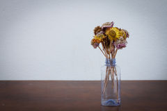 Dried flower in recycle bottle Stock Photography