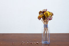 Dried flower in recycle bottle Royalty Free Stock Photography