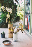 Dried flower in vase. And ashtray vintage style film scan Stock Images