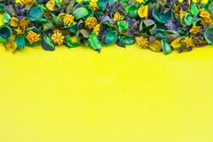 Dried Flower, Yellow Background stock photo
