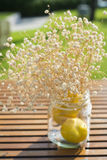 Dried flowering grass in glass bottles Stock Image
