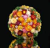 Dried flowers. Colorful bouquet of dried flowers on a black background stock photo