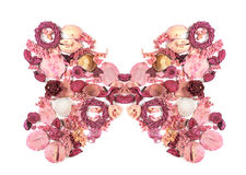 Dried flowers arranged to form a butterfly. Royalty Free Stock Photography
