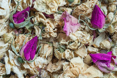 Dried flowers. Background dried flowers roses. Herbarium for decoration stock photos