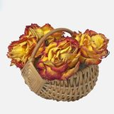 Dried flowers in a basket Royalty Free Stock Image