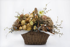 Dried a flowers, beautifully crafted, white backgrounds Royalty Free Stock Image