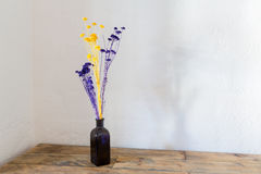 Dried flowers in blue bottle vase on wood Stock Photography