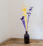 Dried flowers in blue bottle vase on wood Royalty Free Stock Photography