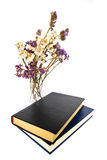 Dried flowers and books Royalty Free Stock Photography