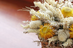 Dried flowers bouquet Stock Photo