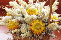 Dried flowers bouquet Royalty Free Stock Image
