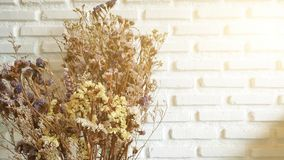 Dried flowers bouquet on white bricks background. Sweet, yellow, blossom, morrning, fresh stock photography