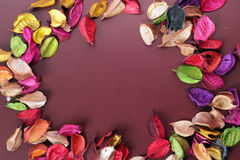 Dried Flowers. On brown paper.free space for your text royalty free stock photos