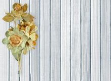 Dried flowers on color wooden planks background Royalty Free Stock Images