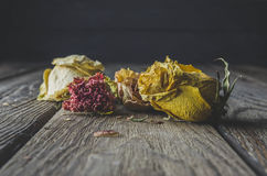 Dried flowers. Dark photo dried flowers on a wooden table, black background Royalty Free Stock Images