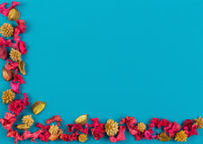Dried flowers, exotic leaves and plants frame on blue background. Top view, flat lay. Stock Images