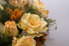 Dried flowers in the foreground, bouquets of dried flowers, flower arrangement. Floral arrangement of dried flowers in a vase, household dried flowers, flash Royalty Free Stock Images