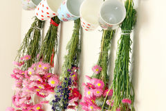 Dried flowers hanging in the kitchen Stock Photos