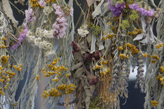 Dried Flowers and Herbs Hanging Stock Photo