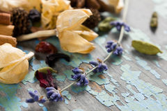 Dried flowers, herbs and spices Royalty Free Stock Photography