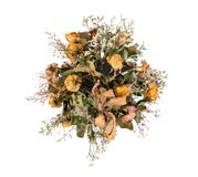 Dried flowers isolated. On white background royalty free stock image