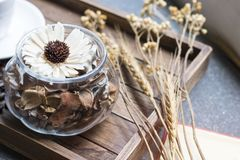 Dried flowers jar on wooden tray with warm morning light royalty free stock image